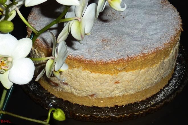 Kase Sahne Torte Meine Liebste Aller Torten Backen Mit Leidenschaft