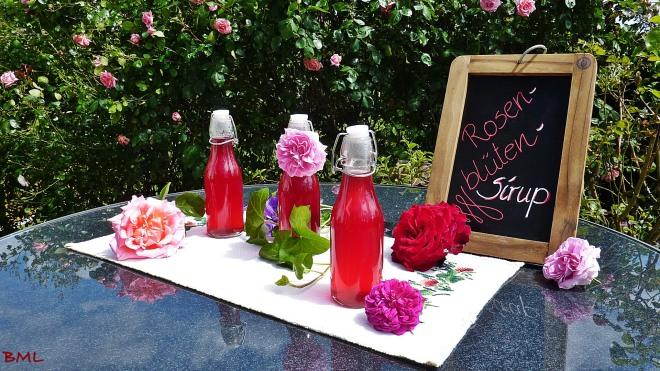 Rosenblütensirup (8)