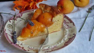 Aprikosenwähe (3)