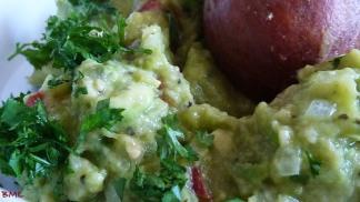Guacomole (4)