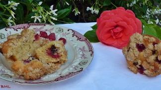 Himbeer-Haferflocken-Muffins mit Streuselcrunch (20)