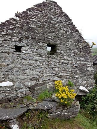 Irlandblogbilder2016.2