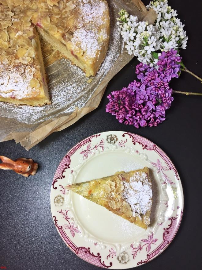 Rhabarberkuchen (3)