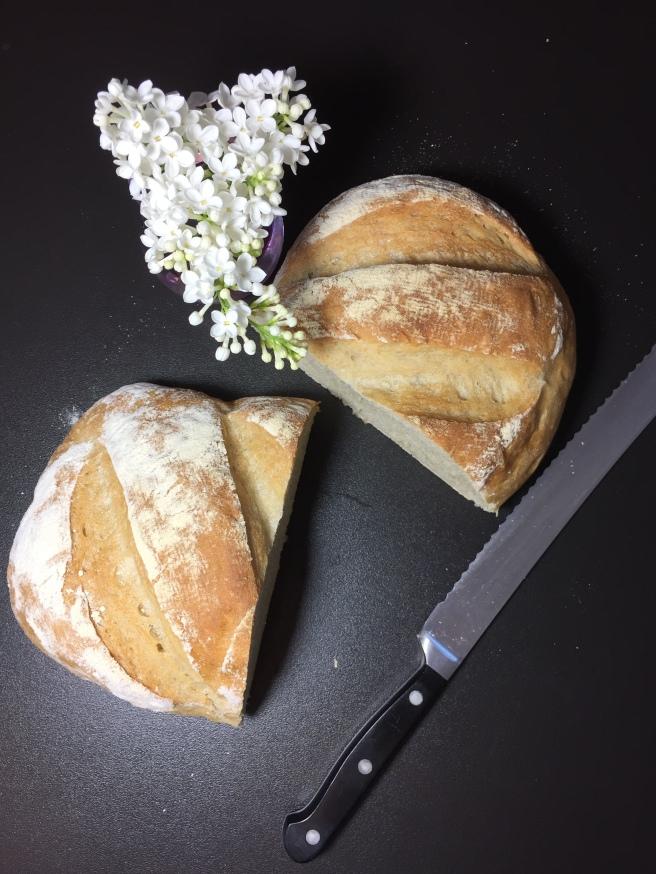 Weizenbrot (8)