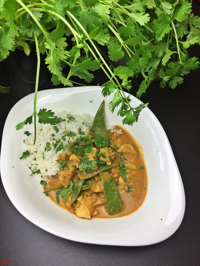 Chicken Korma (16)