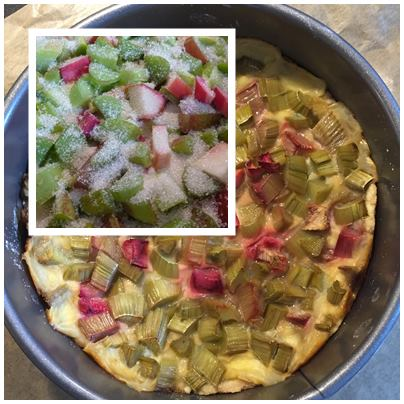 Rhabarber-Pudding-Kuchen3
