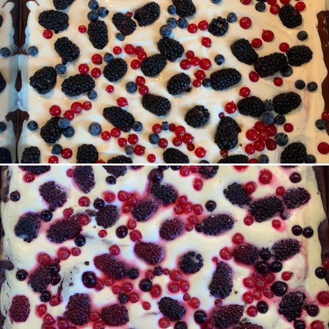 Cheesecake (22)
