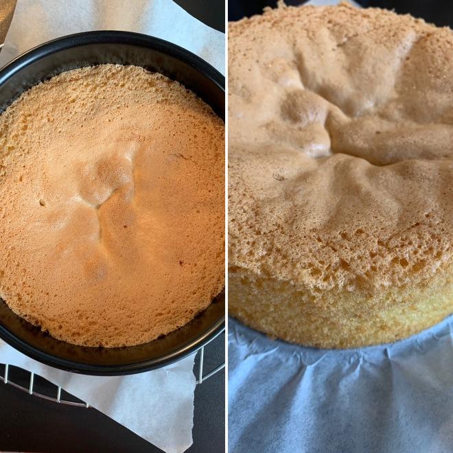 Torte (28)