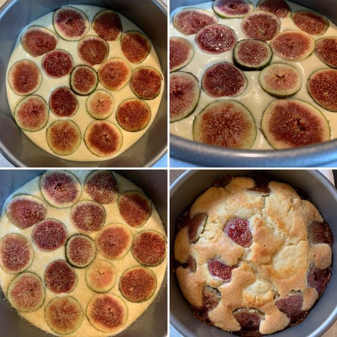 Feigenkuchen (15)