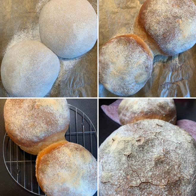 Basler Brot (1)