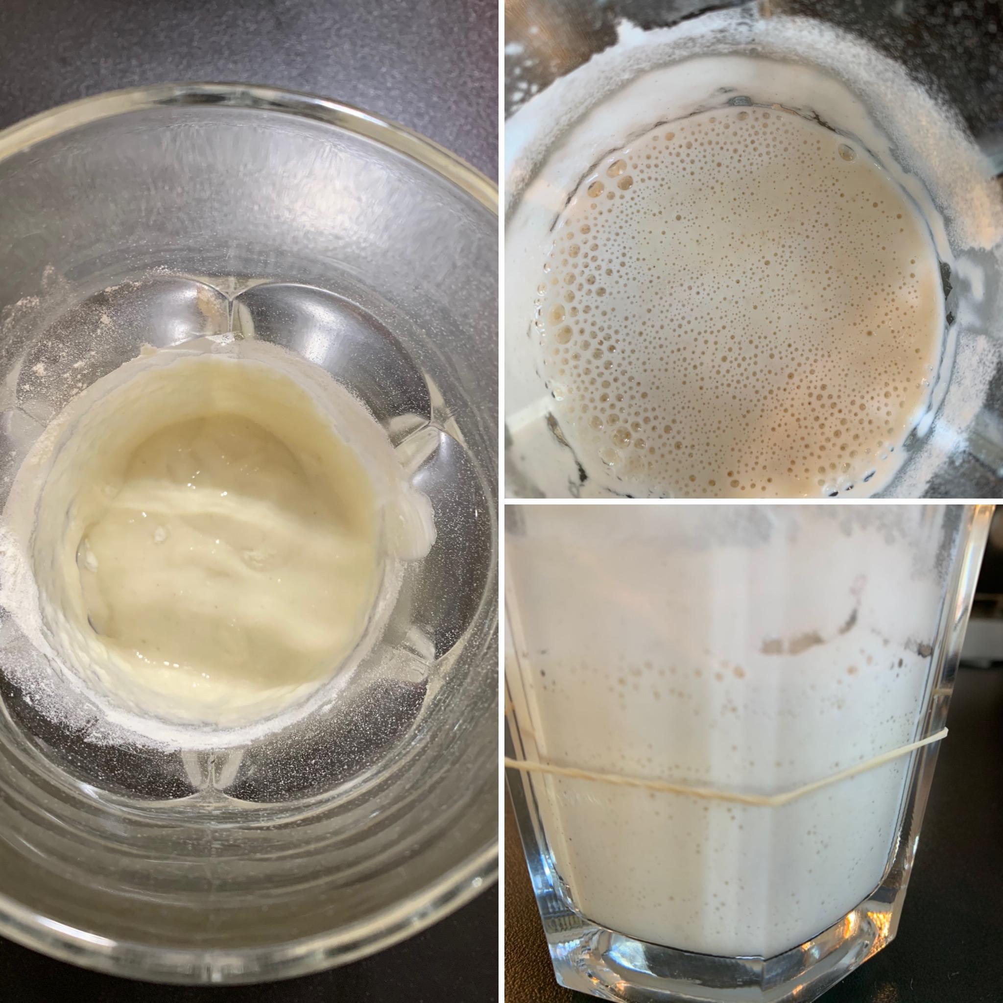 Pasta Madre (2)