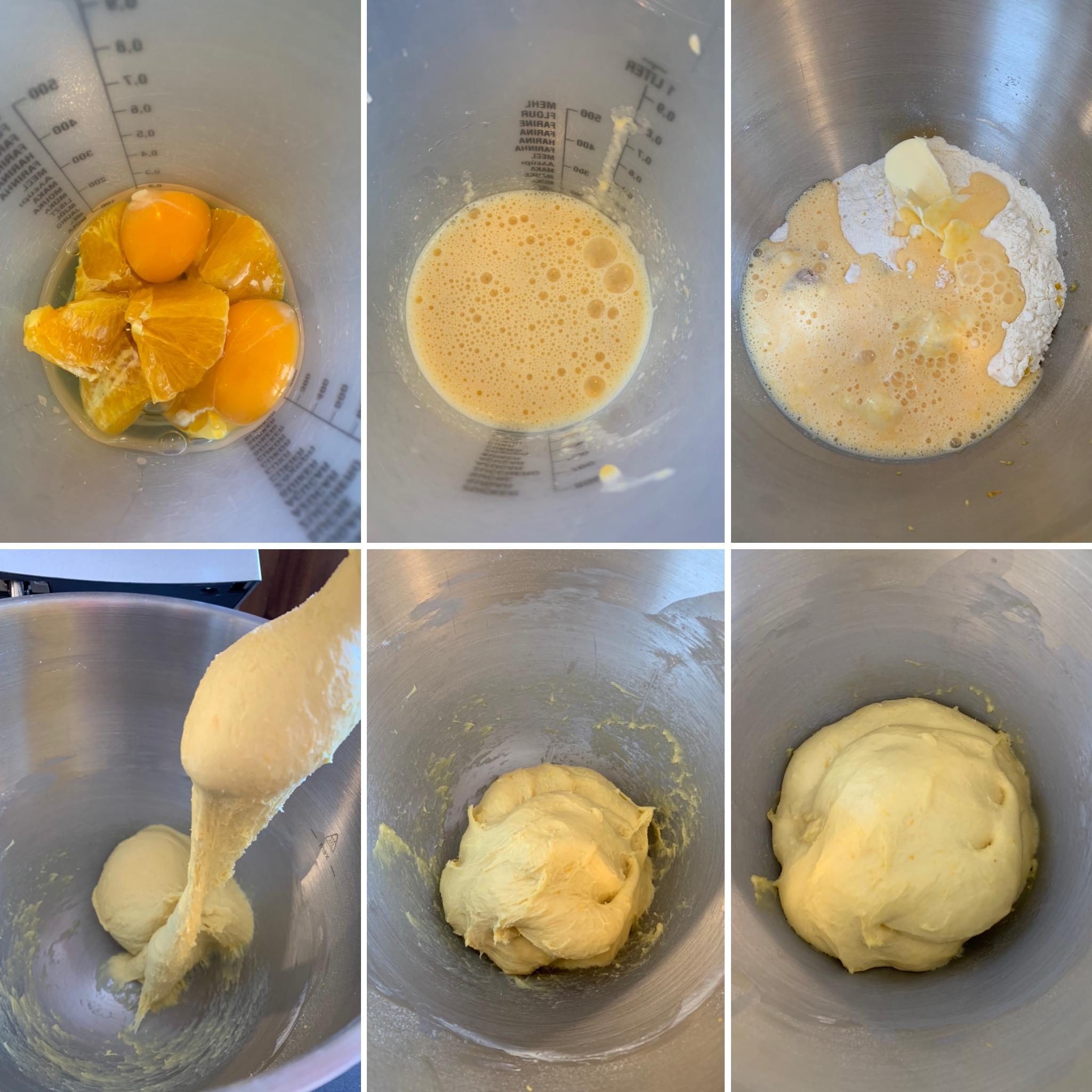 Orangenschnecken (2)