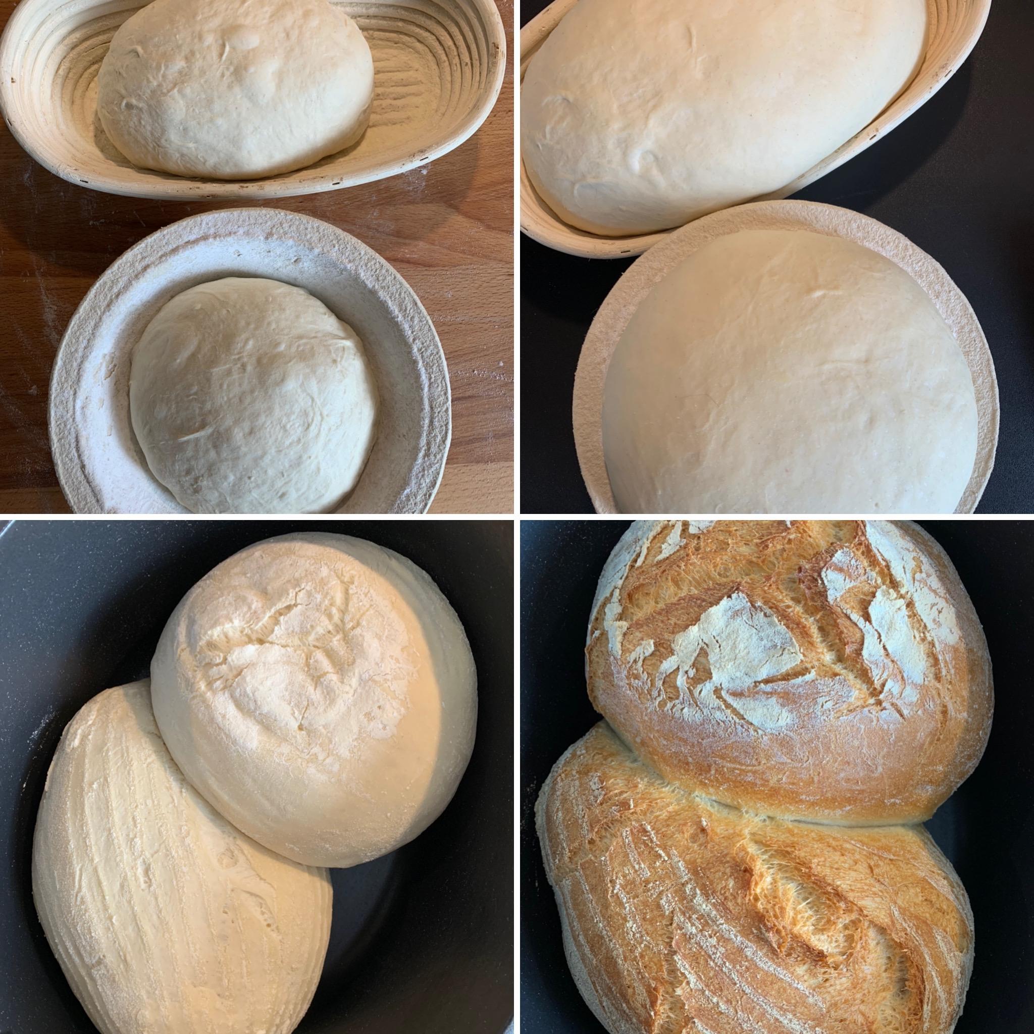 Pane di grana duro (14)