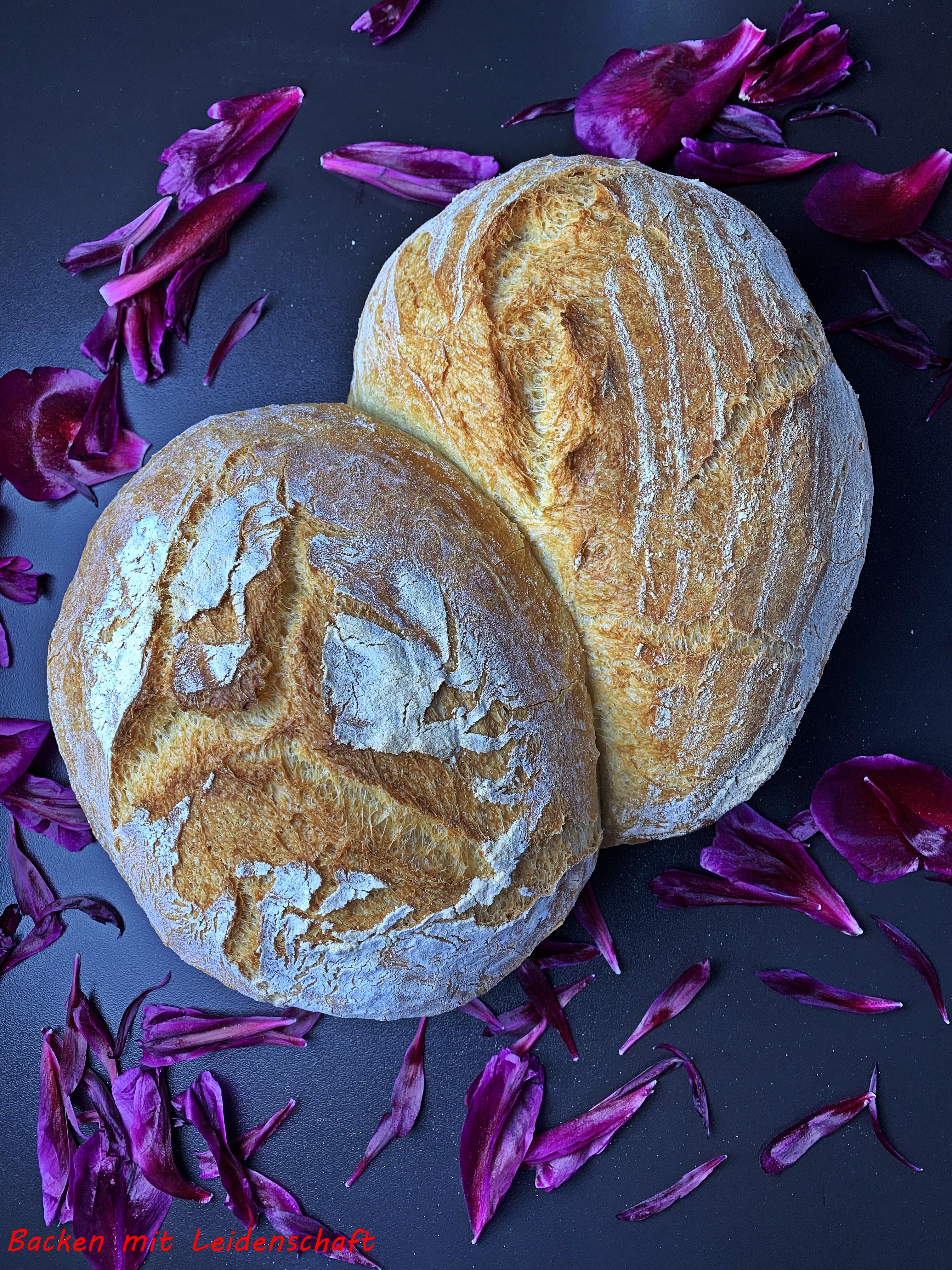 Pane di grana duro (3)