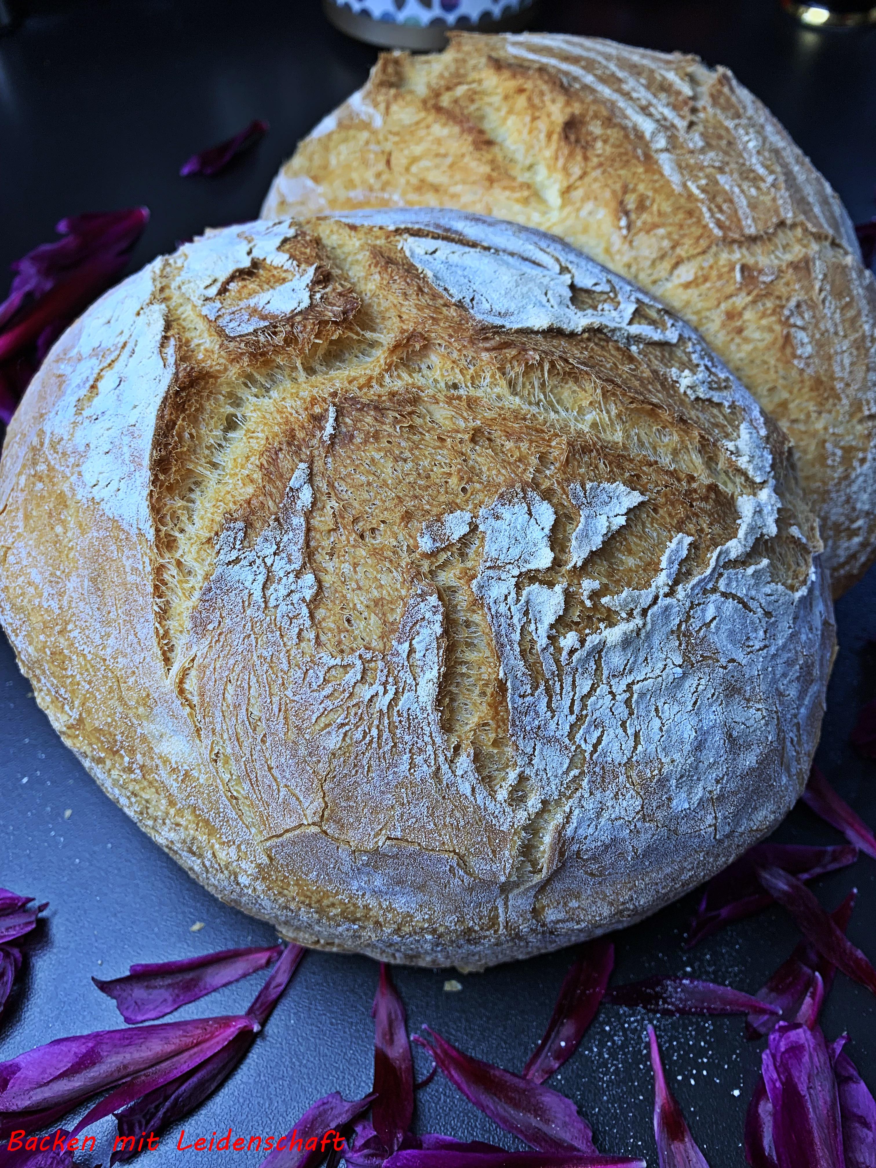 Pane di grana duro (4)